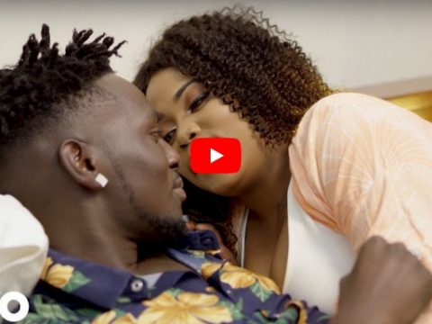 VIDEO Sex Dinah ft Barakah the Prince - PENZI LAKO mp4