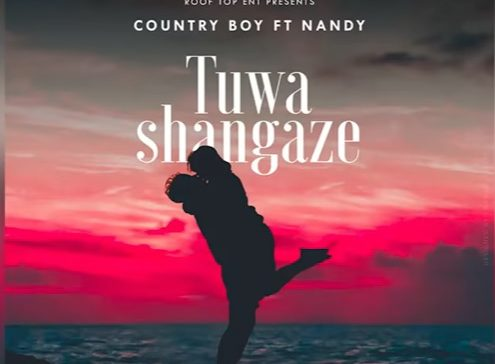 (3.50MB AUDIO) Country Boy ft Nandy - Tuwashangaze mp3 Download