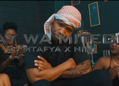 (OFFICIAL VIDEO) Nay Wa Mitego ft Mtafya & Nini – NISHAACHAGA mp4 Download