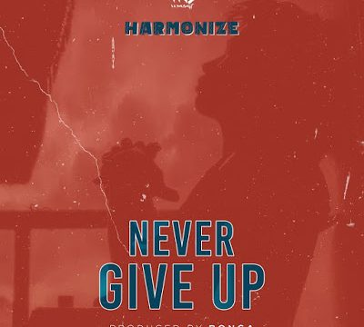 (3.0MB AUDIO)Harmonize - Never Give Up mp3 Download