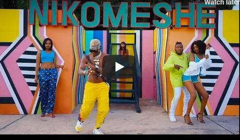 (OFFICIAL VIDEO) Dully Sykes ft Harmonize – NIKOMESHE mp4 Download