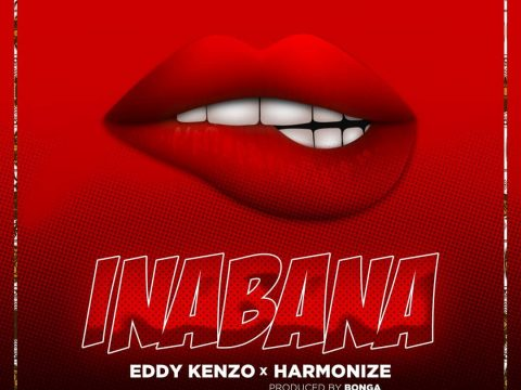 (3.0MB AUDIO) Harmonize ft Eddy Kenzo - INABANA mp3 Download
