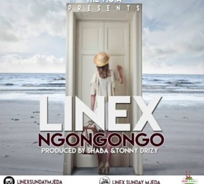 (3.50MB AUDIO) Linex - Ngongongo mp3 Download
