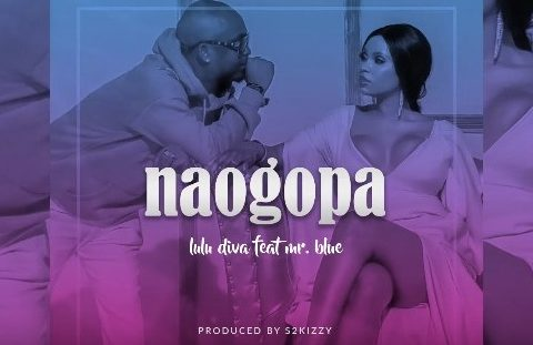 (3.0MB AUDIO) Lulu Diva ft Mr Blue – NAOGOPA