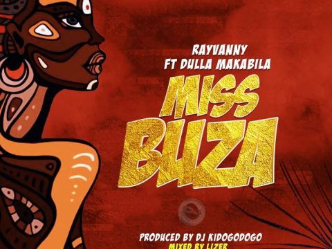 (3.0MB AUDIO) Rayvanny Ft Dulla Makabila - MISS BUZA