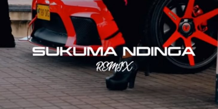 (3.50MB AUDIO) Rosa Ree ft Rayvanny – SUKUMA NDINGA Remix