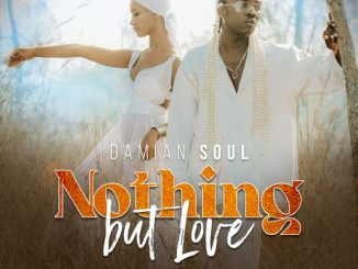 (3.0MB AUDIO) Damian Soul – NOTHING BUT LOVE