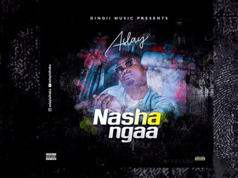 AUDIO | Aslay - NASHANGAA