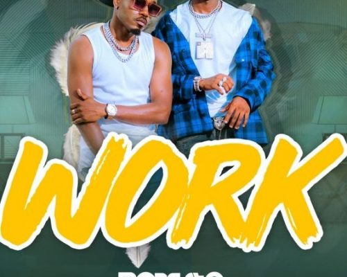 AUDIO | Roberto ft Ibraah – WORK